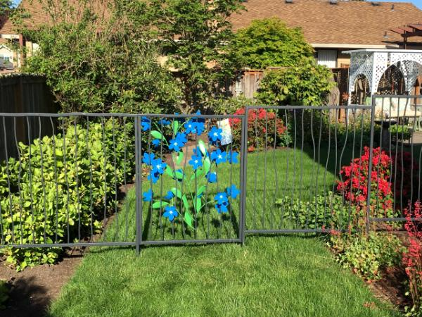 Forget-Me-Not Fence