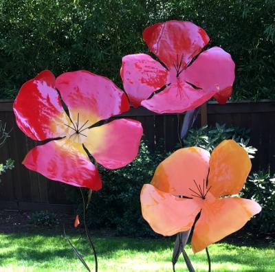 Giant Poppies